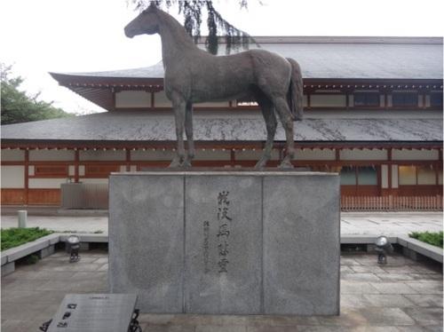 13_軍馬.JPG